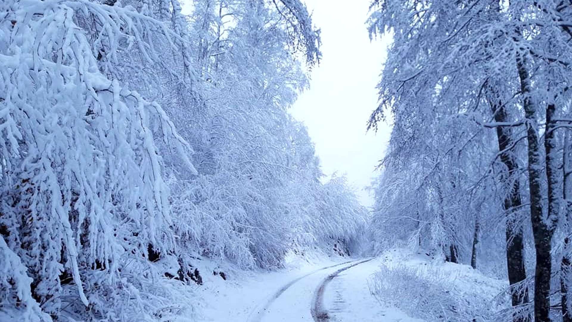 Fotografije snijegom prekrivene planine | Nacionalni park Sjeverni Velebit